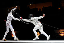 Learn more about Fencing