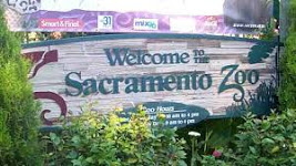 Learn more about Sacramento Zoo